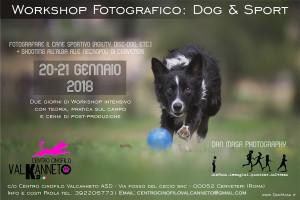 Workshop DOG & SPORT – by Dan Masa Photography