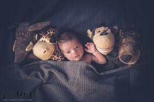 Novità! Servizi fotografici New Born Photography!